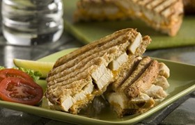 Grilled Cheese and Chicken Panini Sandwiches